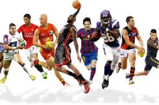 sport-2017
